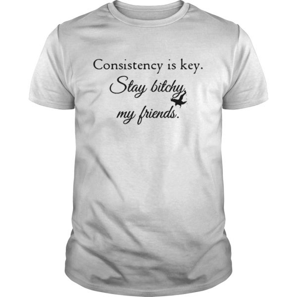 Consistency is key stay bitchy my friends shirt Shirt