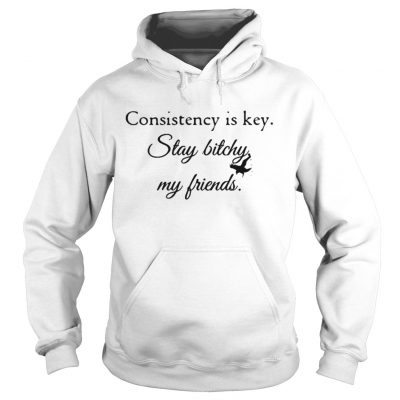Consistency is key stay bitchy my friends shirt Ladies V-Neck