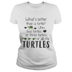 Whats Better Than A Turtle Uhm Two Turtles Or Three Turtles Or All The Turtles ladies tee