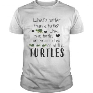 Whats Better Than A Turtle Uhm Two Turtles Or Three Turtles Or All The Turtles unisex