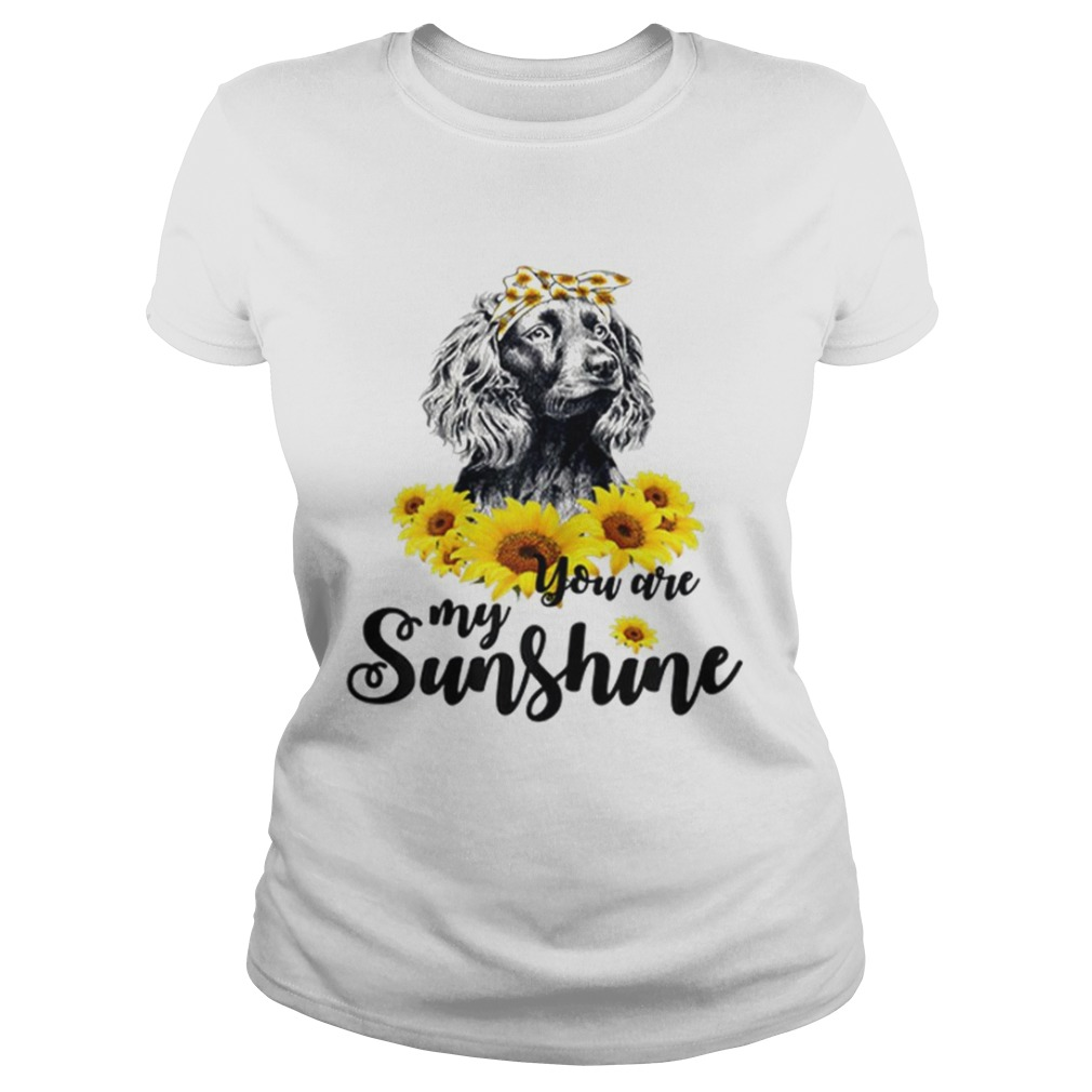 Boykin Spaniel You Are My Sunshine Sunflower  Classic Ladies