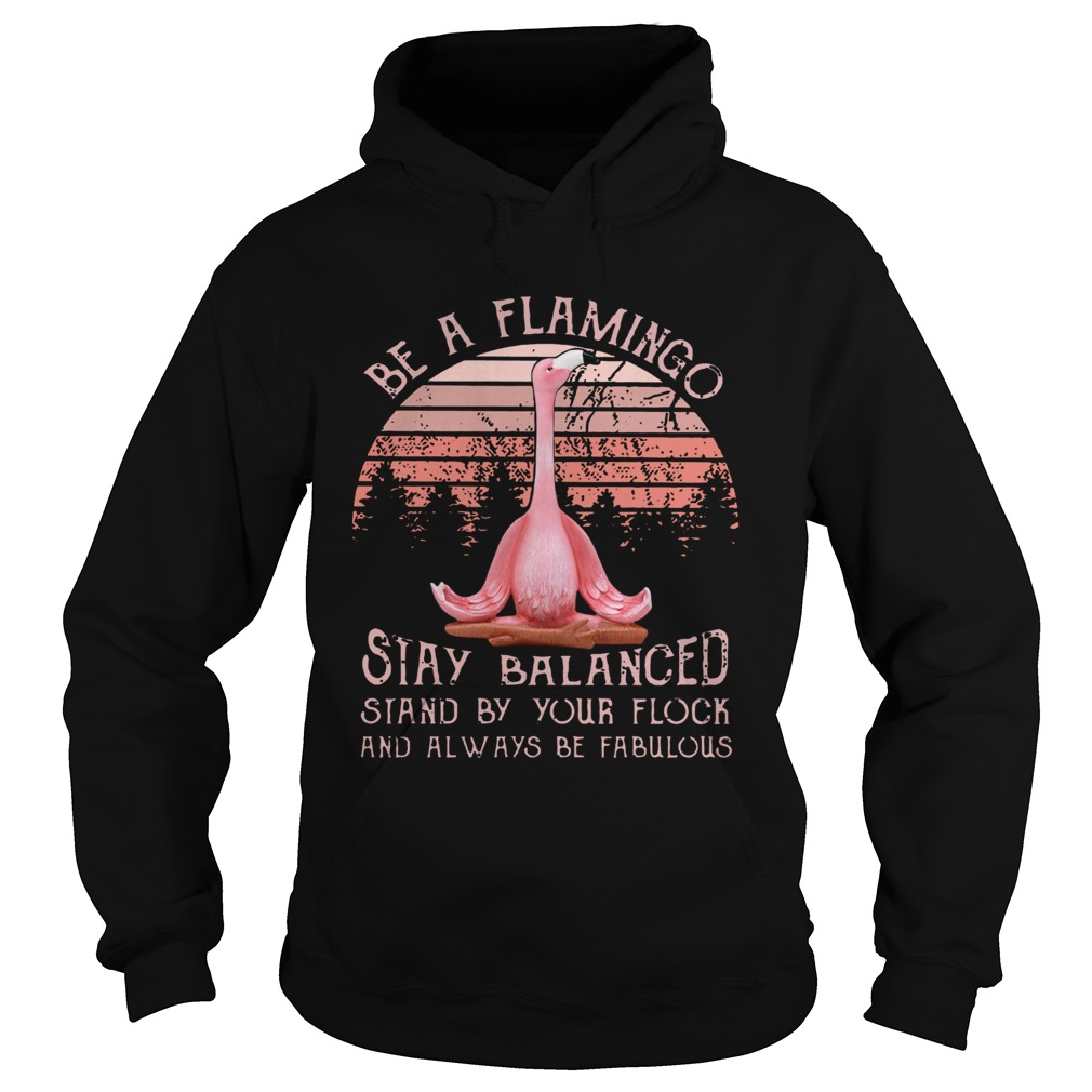 Be a flamingo stay balanced stand by your flock  Hoodie